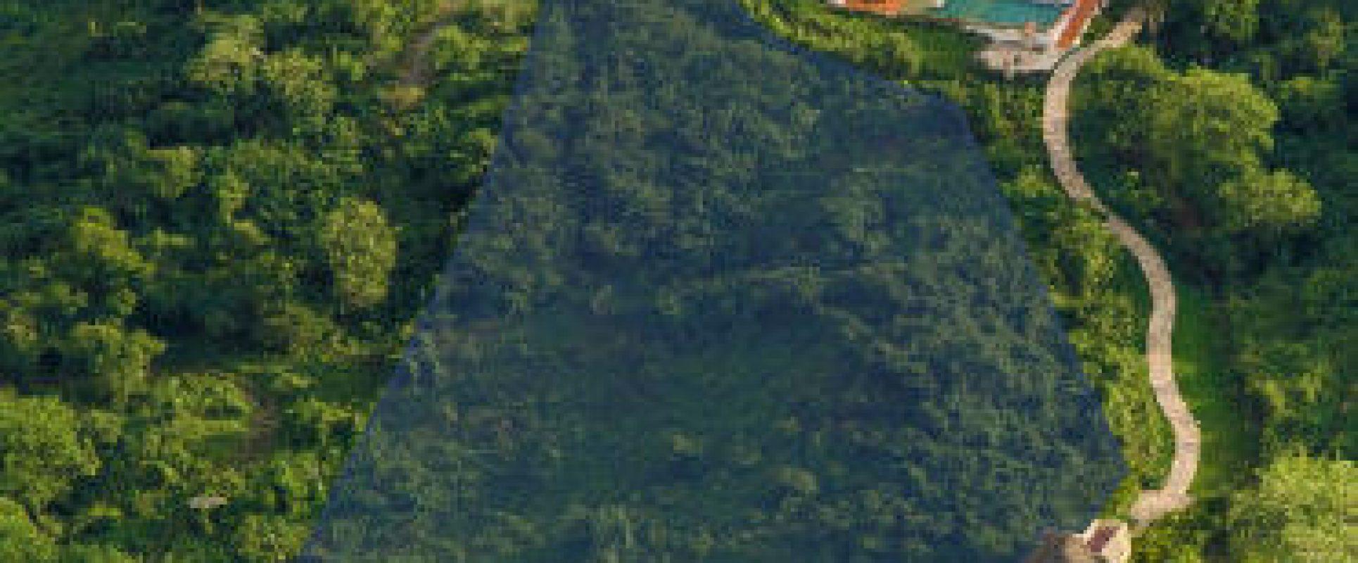 Kupuri Estates Photo