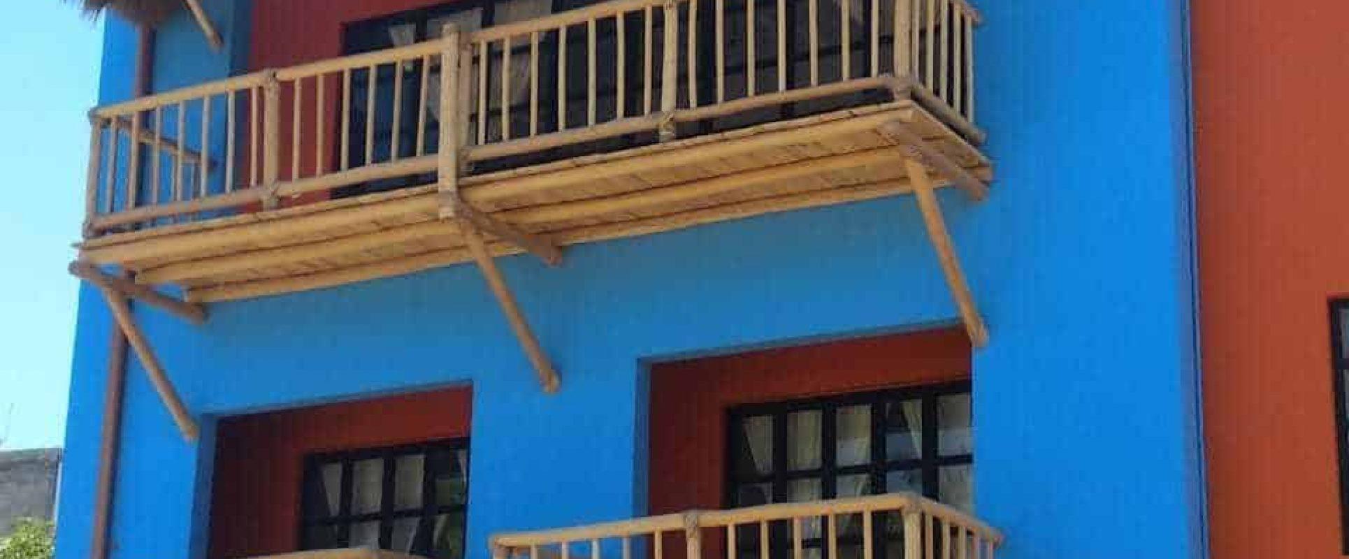 Hummingbird House Photo